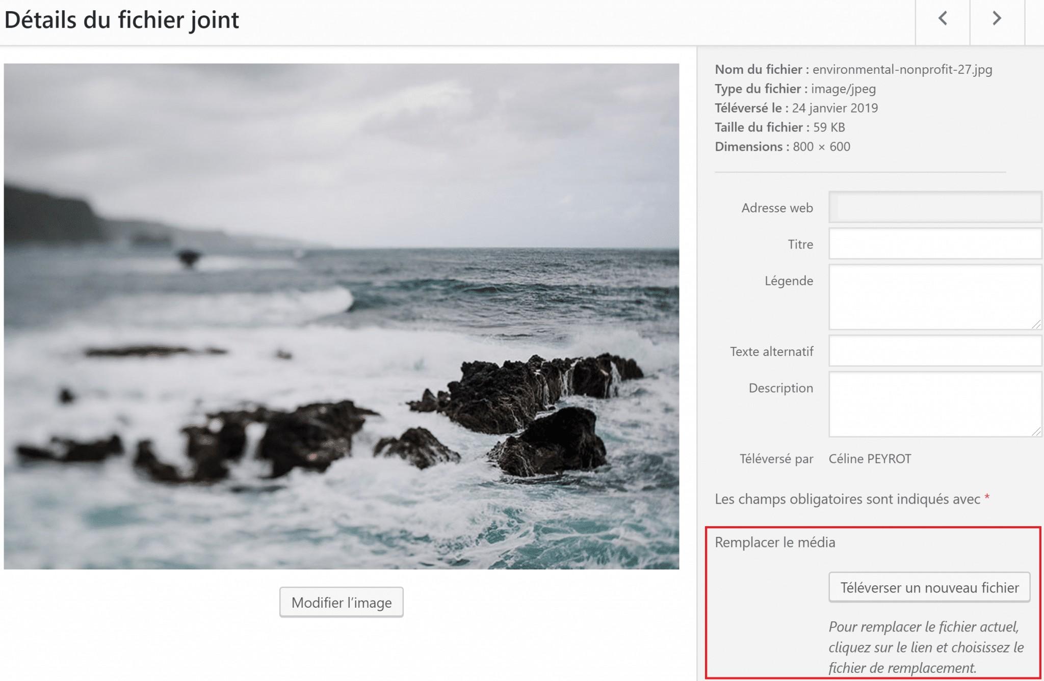 Choisir l'image à remplacer avec le plugin Enable Media Replace