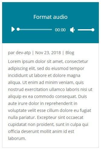 Aperçu du format de publication Son avec Divi pour WordPress