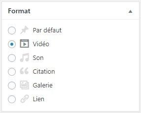 Format de publication vidéo dans WordPress