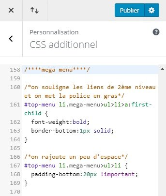 CSS Additionnel WordPress
